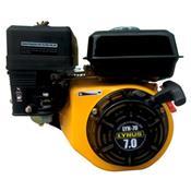 Motor A Gasolina Com Partida Manual 7Cv Lyn-70 Lynus