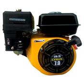 Motor a Gasolina Com Partida Manual 7cv LYN - 70 Lynus