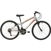 Bicicleta Mtb Aro 24 Masculina 18 Marchas Prata 7141 Polimet