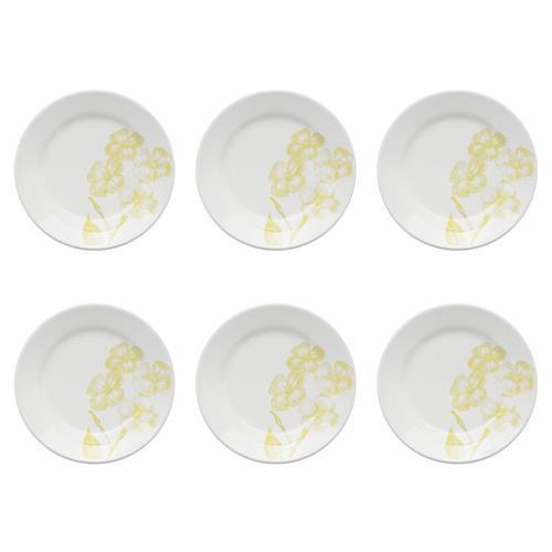 Conjunto 6 Pratos Sobremesa 18Cm Donna Pureza Am18-5103 Biona
