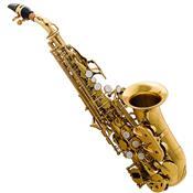 Saxofone Soprano Curvo Bb Laqueado Hcssc-310Gl Harmonics