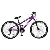 Bicicleta Free Rider 21 Marchas Aro 26 Roxo Neon Master Bike