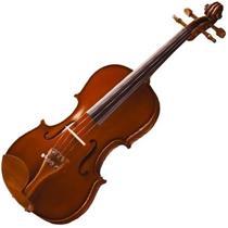 Violino 4/4 Maple Flame Honey Finishing Spruce Michael